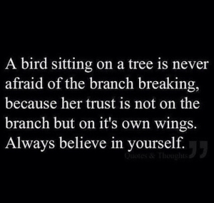 trust yourself, bird, branch, wings