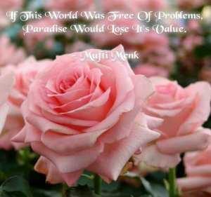 If this world was free of problem, paradise would lose its value, mufti menk