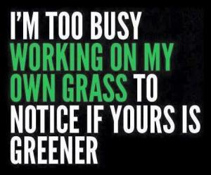 i am to busy working on my own grass to notice if yours is greener
