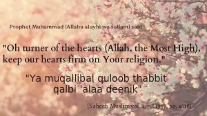 O turner of hearts, keep our heart firm on your religion, deen. Allah