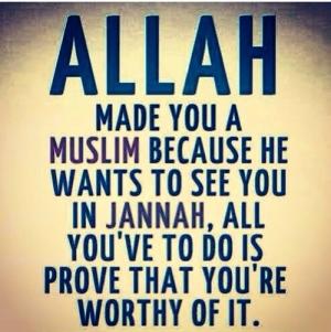 Allah, Jannah, Muslim, prove