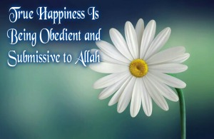 True happiness is being obedient and submissive to Allah, white flower