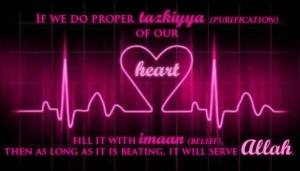 heartbeat Allah, tazkiya, purification of heart, serve Allah