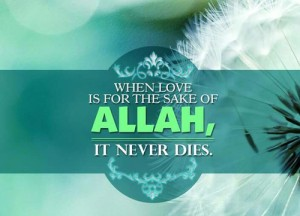 love for the sake of allah - 1